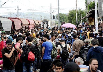 migrantsgevgelija